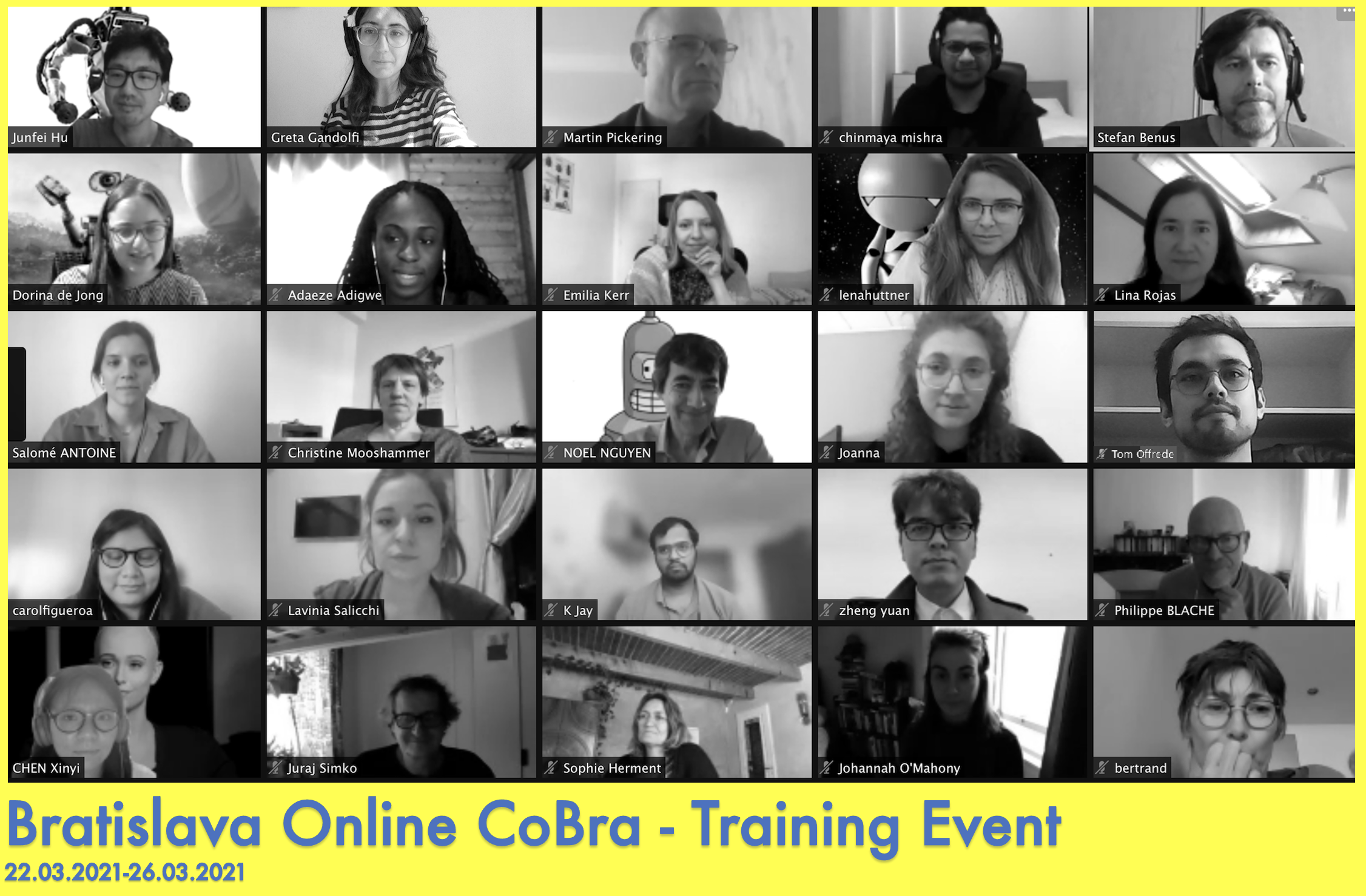 Zoom Screen of Bratislava Online Event participants.
